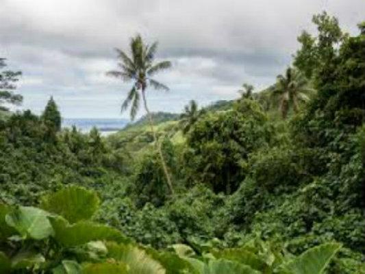 Bilan carbone et environnement